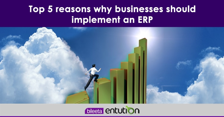 article-image-top-5-reasons-why-businesses-should-implement-an-erp